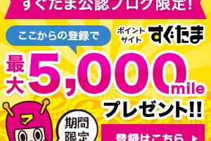 限定_友達紹介用バナー300_250