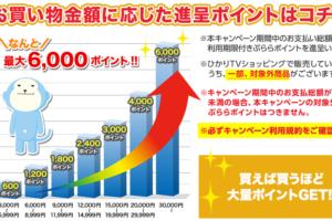 「ポイントたま~る」キャンペーン6,000P