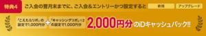 特典4:「こえたらリボ」「キャッシングリボ」の設定で、iDキャッシュバック 2,000円進呈