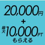 「HUAWEI P20 lite」Payトク GOGOクーポン併用 回線契約で33,401円の利益